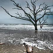 Trees In Surf Art Print