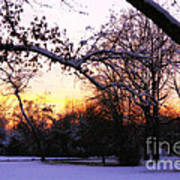 Trees In Wintry Pennsylvania Twilight Art Print