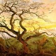 Trees Of Crows Art Print