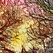 Trees Of The Four Seasons Art Print