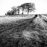 Trees On A Hill Art Print by John Farnan