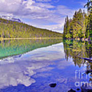 Trees Reflected At Valley Of The Five Lakes Art Print