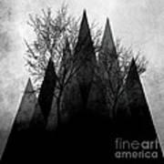 Trees Vi  Art Print