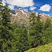 Trentino - Pejo Valley On Summer Art Print