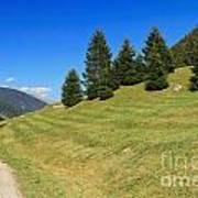 Trentino - Val Di Sole Art Print