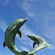 Tresco Dolphins Art Print
