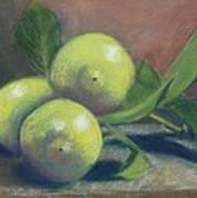 Trio Of Lemons Art Print