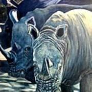 Trio Of Rhino Art Print