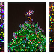 Triptych - Christmas Trees - Featured 3 Art Print
