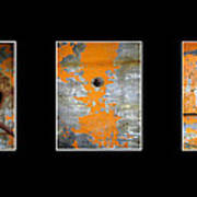 Triptych Old Metal Series Art Print by Ann Powell