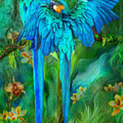 Tropic Spirits - Gold And Blue Macaws Art Print