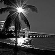 Tropical Bridge In Black And White Art Print