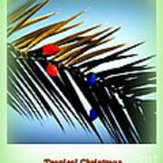 Tropical Christmas Art Print
