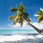 Tropical Escape Art Print