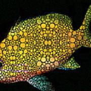 Tropical Fish Art 14 By Sharon Cummings Art Print
