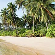 Tropical Island Beach Scenery Art Print