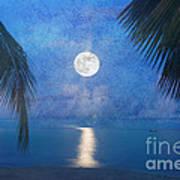 Tropical Moonglow Art Print