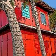 Tropical Orange House Palm Trees - Whoa Now Art Print