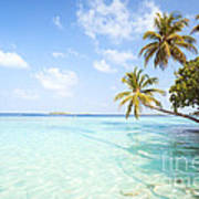 Tropical Sea In The Maldives - Indian Ocean Art Print