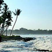 Tropical Shore Art Print