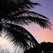 Tropical Sunset Art Print
