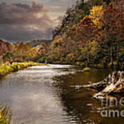 Trout Fishing Art Print by Tamyra Ayles