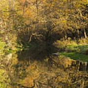 Trout Run Creek Fall 2 Art Print
