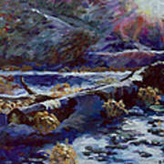 Truckee River Snow Tree Art Print
