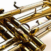 Trumpet Valves Art Print