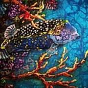 Trunkfish - Male Art Print
