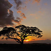 Tsavo Sunset Art Print
