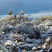 Tucson Covered In Snow Art Print