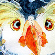 Tufted Puffin Art Print
