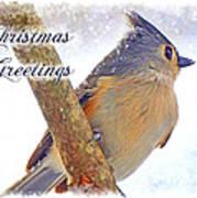 Tufted Titmouse Christmas Card Art Print