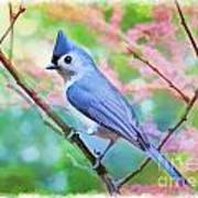 Tufted Titmouse With Spring Booms - Digital Paint II Art Print