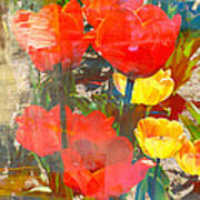 Tulip Abstracts Art Print