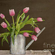 Tulip Bouquet  Print by Alana Ranney