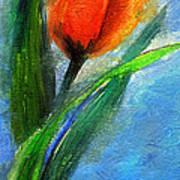 Tulip - Flower For You Art Print