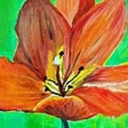 Tulip Art Print by Kat Poon