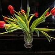 Tulip Mania 18 Art Print