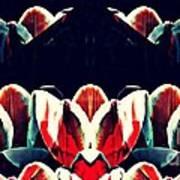 Tulip Panorama Art Print