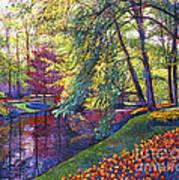 Tulip Park Art Print