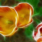Tulips-6892-fractal Art Print