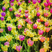 Tulips And Daffodils Art Print by Jill Balsam
