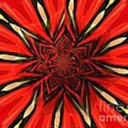 Tulips And Daffodils Under Star Glass Art Print