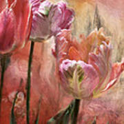 Tulips - Colors Of Love Art Print