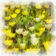 Tulips Everywhere Art Print