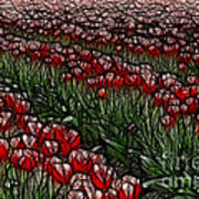 Tulips Fields Are Forever Art Print