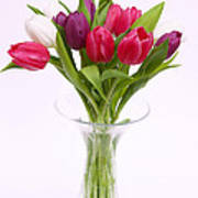 Tulips In Vase Art Print