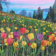 Tulips Lake Art Print